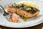 Gas-Grilled Salmon Fillets